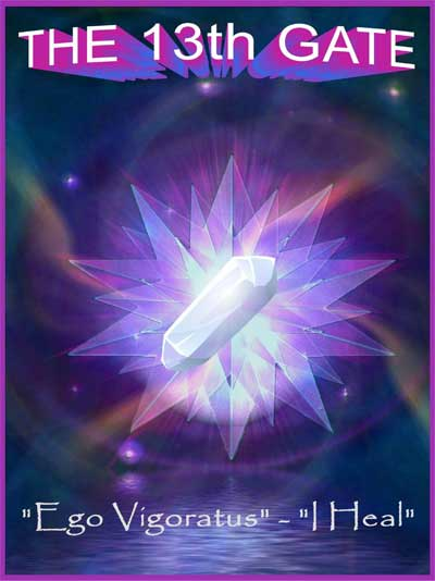 Solarium | Light Force Network