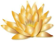 Being The Golden Blossoming Flower